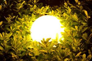 Solar Kugelleuchte in einer Hecke